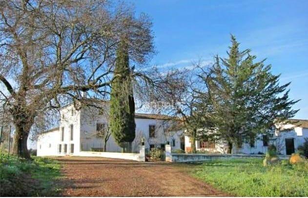 Farm House Andaluz