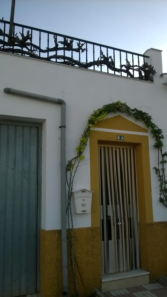 House in the village of La Caleruela ready to live