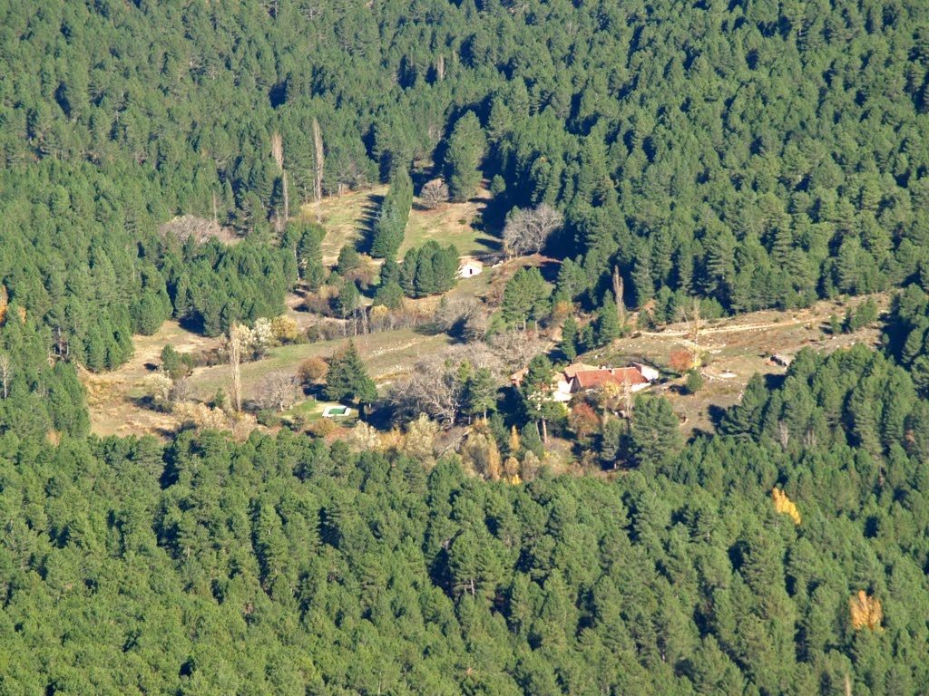 Big Cortijo with forest within Natural Park